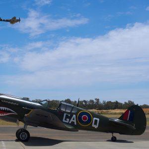 P-40 Kittyhawk GAQ owned by Allan Arthur, and Spitfire Mk VIII 'Grey Nurse' in flight.