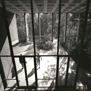 UTS Ku-ring-gai Campus (1968-71). Architect: David Don Turner. Photo courtesy of the Australian Institute of Architects.