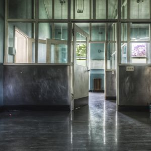 Callan Park Hospital, showing one of the rooms in the Rehabilitation area. You can see the old wire mesh windows and a beautiful brightly lit Jacaranda out the window to the right.